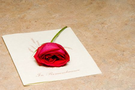 remembered: A single rose on a funeral bulletin.