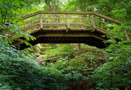 vlonder: Een oude houten loopbrug bij een bos.