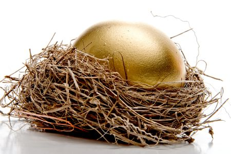 nest egg: A golden egg from the golden goose. Stock Photo