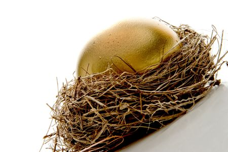 A golden egg from the golden goose. photo