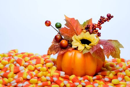 candy corn: A pumpkin with candy corn making up a harvest scene.
