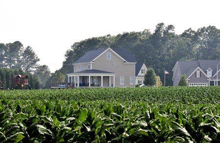 encroaching: A new housing develpoment encroaching on farmland.