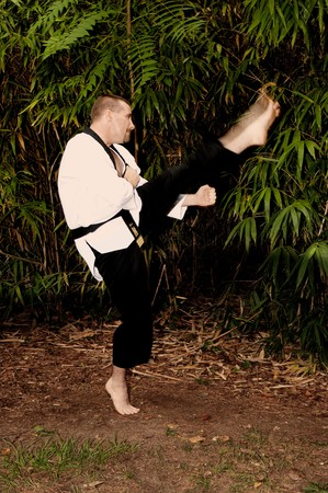 A man practicing his martial arts Karate moves Stock Photo - 7851221