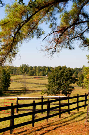 The fence on a large horse pasture photo