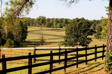 The fence on a large horse pasture