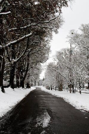 residential neighborhood: Una tormenta de nieve en un barrio residencial Foto de archivo