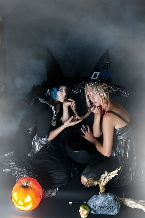 Beautiful young women witches with a snake in a jack-o-lantern 免版税图像