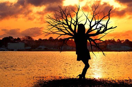 Beautiful silhouette of a natural tree woman at the ocean