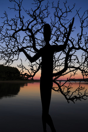 Beautiful silhouette of a natural tree woman
