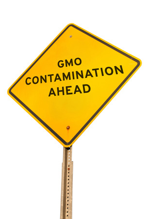 genetically modified organisms: Roadsign warning that there is GMO contamination ahead