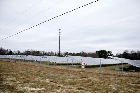 photocell: Series of solar panels in a huge field