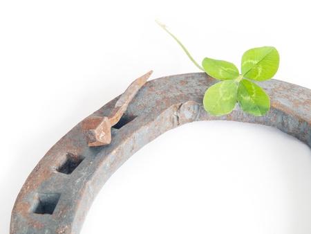 horseshoe with clover on white background Stock Photo - 16485133