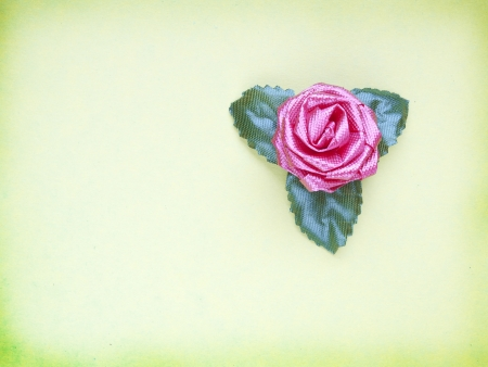 Pink flower fabric isolated on an abstract background
