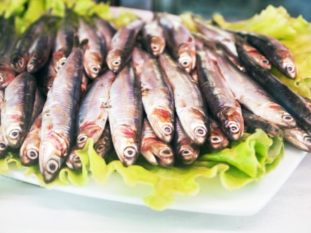 almejas: Pequeña Pescado fresco  anchoas, sardinas, espadín  Stock Photo