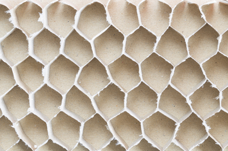 recycled paperboard honeycomb bee Stock Photo