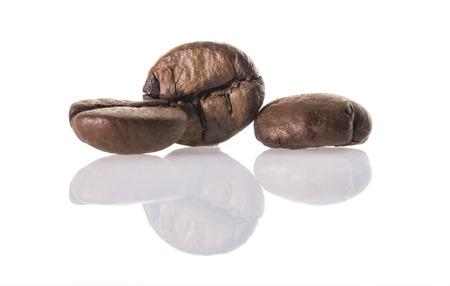 Coffee beans close up macro