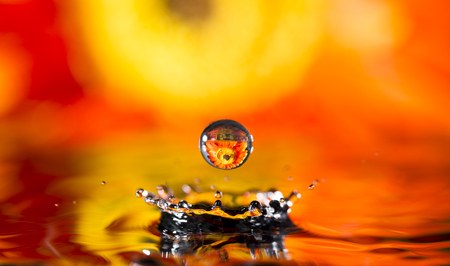 Water splash with reflection in drops orange flower photo
