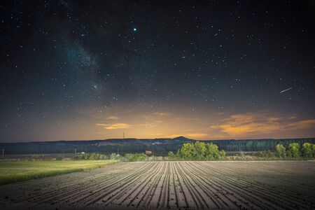 corn field sprouting in Ribera Del Duero at night with milky way in the sky