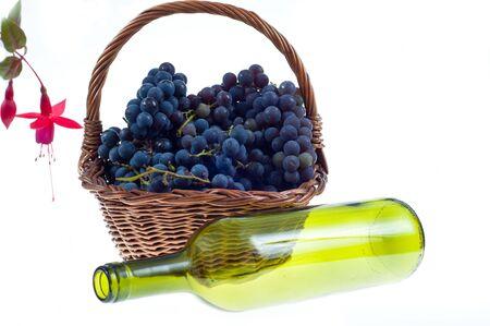noire: Grape on white background  Stock Photo