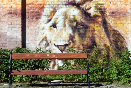 Graffiti  lion on wall