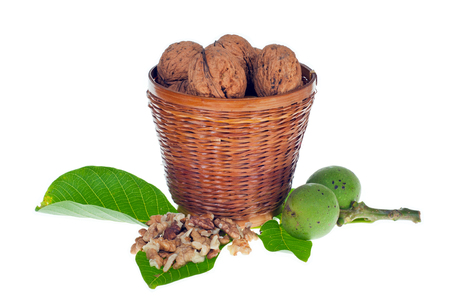 Walnuts and leaves on white background.