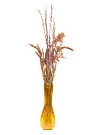 Several sprigs of dried wheat. Stock Photo