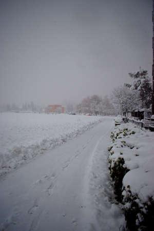 Landscape in Vaduz in Liechtenstein disappears in a lot of fresh snow 14.1.2021