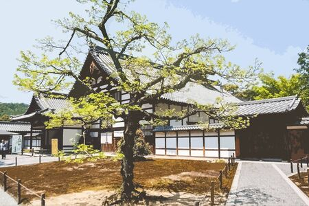 bonsai tree asian building structure background