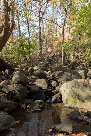 rock creek: Rock Creek