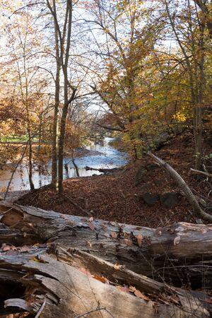 rock creek: Rock Creek Park