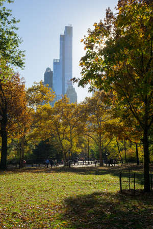 Buildings tower over the colorful trees of beautiful Central Park in the height of autumn. Stockfoto