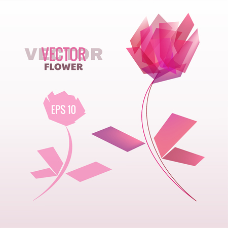 pink flower: pink flower card