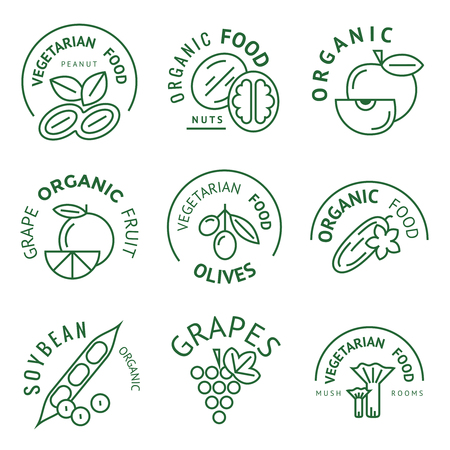 ice tea: healthy food concept, vintage style. vector labels icons