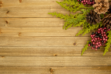 Rustic wood background with berries, pine cones, and leaves Imagens