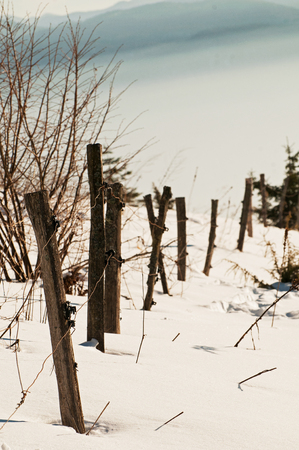 Old wooden livestock fence in the winter 스톡 콘텐츠