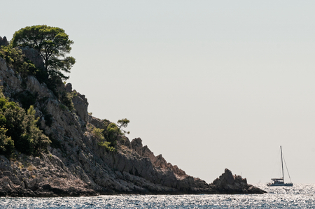 Sailing boat passing the cap with pine trees in Adriatic sea