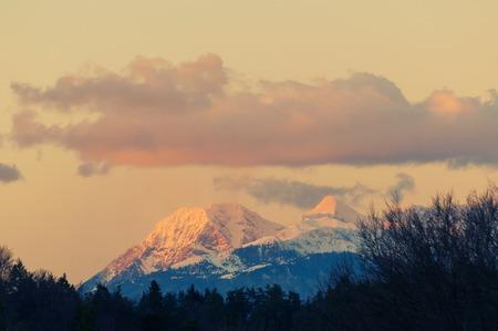 Karawanks alpine mountain range at sunset and treeline silhouette in foreground, Slovenian Alps