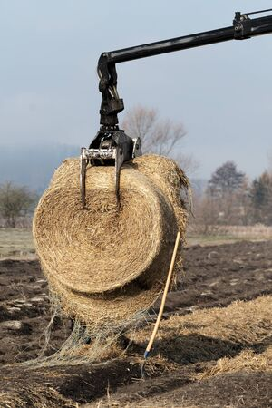 Forestry tractor crane arm with grapple lifting a bundle of straw for ground cover. Agriculture, farming, forestry and mechanization concepts. Фото со стока