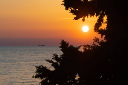 Silhouette of cypress tree and sun setting over sea with bright and clear orange sky in background. Vacation, tourism and optimism concepts. Stock fotó