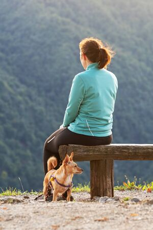 Woman hiker with small dog sitting on wooden bench and enjoying the view on top of the hill. Hiking, pets, animal friends and dog obedience training concepts.