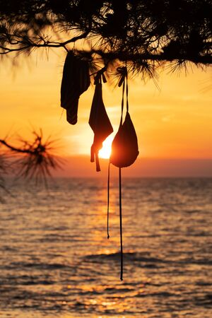 Silhouette of a womans bikini swimsuit hanging on a pine tree with sea and golden orange sunset in background. Vacation, summer, romantic atmosphere and nudist camp concepts.