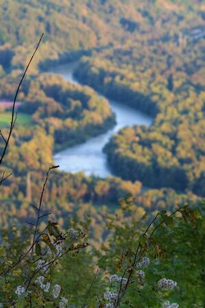 Shrub in foreground and aerial view of Sava river bending through autumn colored forest in background during sunset in Slovenia. Travel, forestry, nature and sustainability concepts