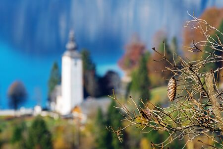 Spruce cone on a dry branch and an old catholic church by the Bohinj lake in the background in Slovenia. Seasons, aging, nature and religion concepts 版權商用圖片