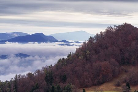 Autumnal view of hill slope and fog in the valley below in overcast weather. Environment, ecology, climate change and weather concepts.