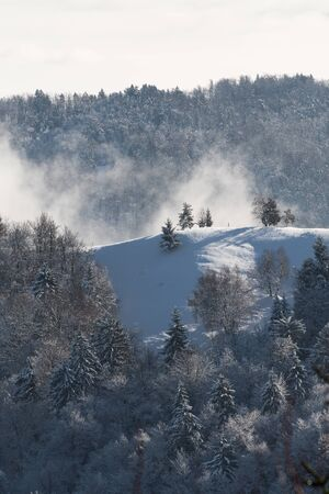 Beautiful wintry scene of snow covered ridge and surrounding forest in the morning. Hiking, seasonal, beauty of nature and environment concepts.