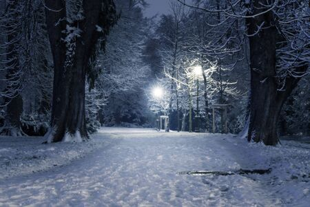 Wintry scene in a snow covered park at night with lit lampposts. Holidays, season, urbanism and weather concepts