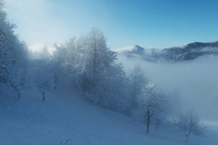 Idyllic wintry scene of snow covered landscape in morning fog. Hiking, seasonal, beauty of nature and environment concepts. Imagens