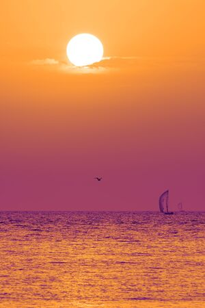 Vibrant sunset over Adriatic sea with seagull passing and two sailboats and colorful sky. Summer, vacation, 80s, sea and tourism concepts