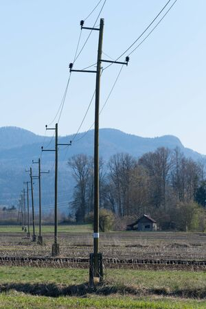 Old wooden three-phase electric utility poles transferring electricity over cultivated agricultural field. Electricity, power distribution and agriculture concepts