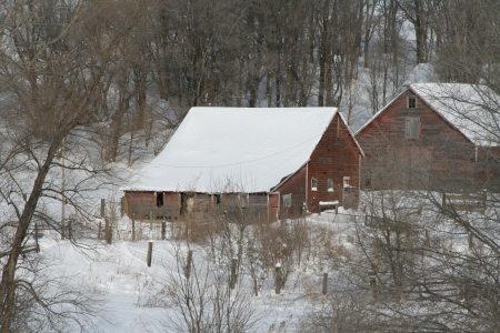 barns winter: Winter scene of old barns and farm yard covered in snow
